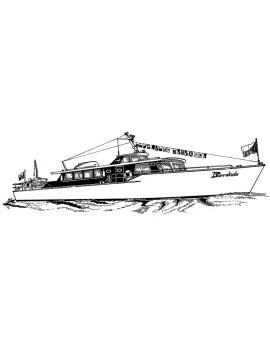 Barracuda (037s)
