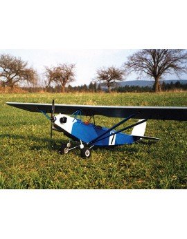 Sparrow II (046)
