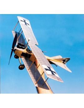 Albatros C 1 (010)